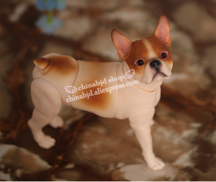 1 6 BJD Doll Iplehouse IP Boston Dog Pet SD Joint Doll Oueneifs Educational Toys