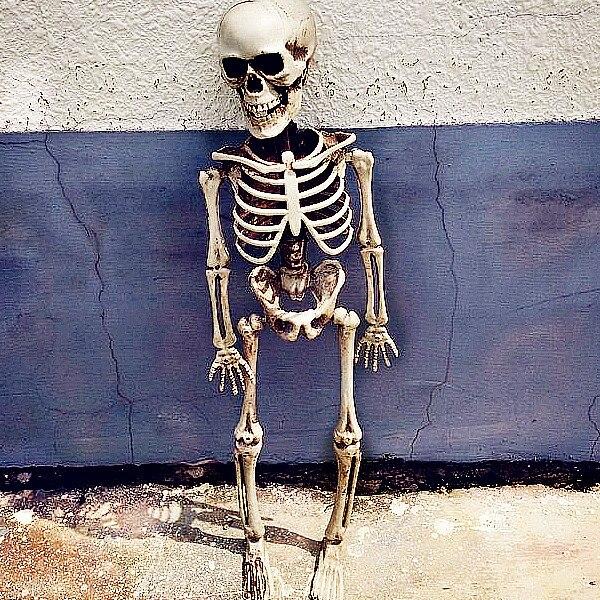 Yüksek Taklit Mini Kafatası Iskeletler Korkunç Cadılar Bayramı - Tatiller ve Partiler Için - Fotoğraf 2