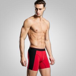 Image 2 - Cuecas calzoncillos masculinas, 4 pçs/lote algodão, cuecas calzoncillos, cuecas masculinas soltas, calecon para homens xxxl, xxxl
