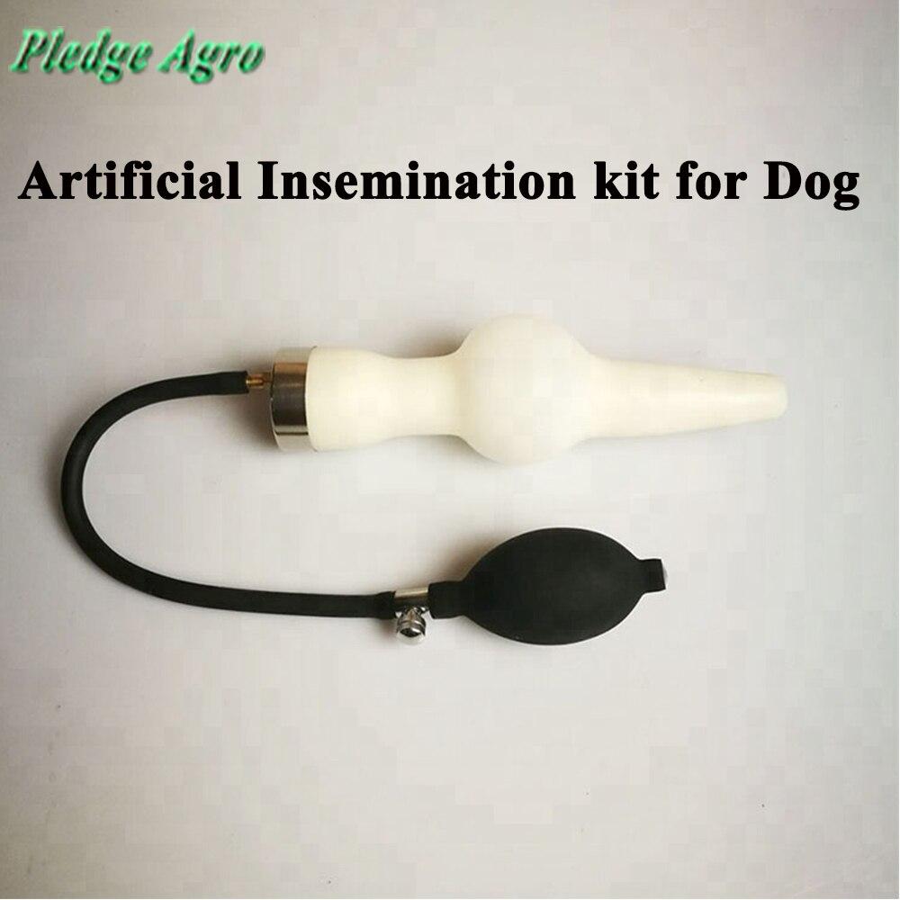 التلقيح الاصطناعي عدة الكلب المهنية تقليد الطبيعة التزاوج طريقة الكلاب التلقيح الاصطناعي حقنة عالية دقيقة على  مجموعة 1