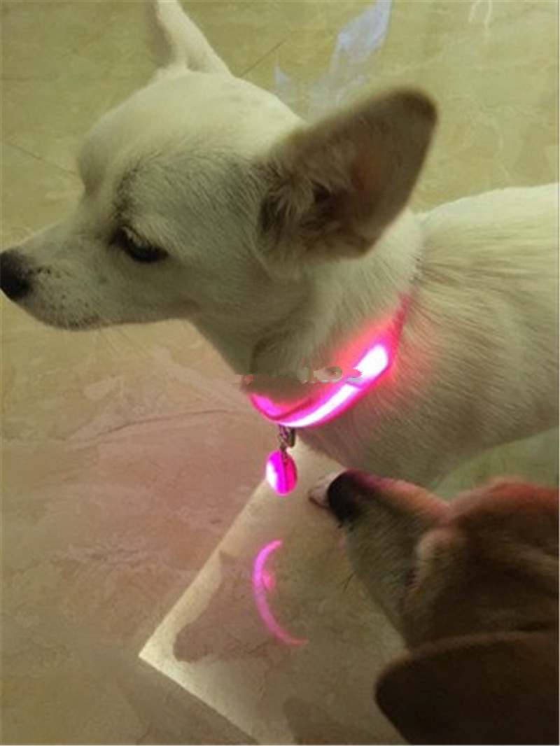 FC100 Cute LED Nylon Pet Dog Collar and Glowing pendant Night Safety Glow Flashing Dog Cat Collar USB Rechargeable/Battery