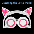 New Folding Cute  LED Light  Cat Wired Headphone For Mobile Phone And PC Computer MP3