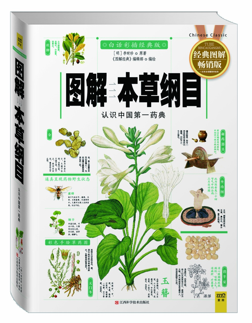 Compendium of Materia Medica Chinese Traditional herbal medicine book with pictures explained learn Chinese Health Food Science sheng nong s herbal classic chinese traditional herbal medicine book with pictures explained learn chinese health food science