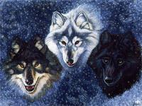 Animals Wolves fantasy 4 Sizes wall picture Canvas Poster Print