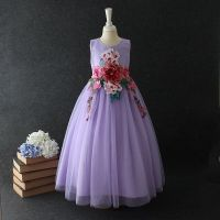 Free Shippin New Kids Party Dress Flowers Luxury Birthday Party Dress Children Clothing Holiday Baby Dress
