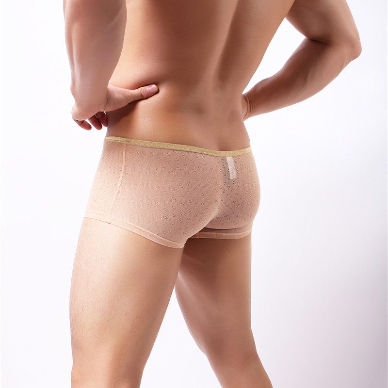 See Through Men Boxers Transparent Underwear Sexy Slip Man Boxer Shorts Breathable Hole Low Waist Male Shorts Panties Boxer in Boxers from Underwear Sleepwears