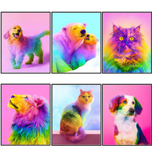Full round diamond 5D DIY painting color dog 3D embroidery cross stitch animal gift decoration