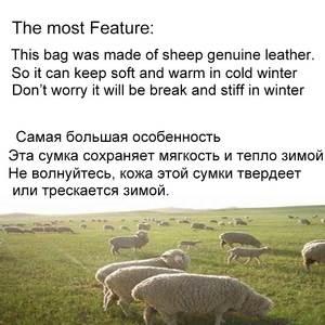 Image 2 - MVA Mens Waist Bag Belt Waist Packs Sheep genuine Leather Waist Bag For men/women Fanny Pack Belt Bum/Hip mens belt bags  8879