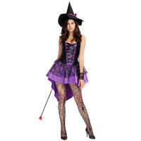 Womens Glamorous Purple Spider Web Witch Costume