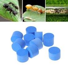 10 шт водоблок трубка/вилка для муравьиной фермы акриловая влага с области кормления, муравьиная вилла PET вставки advanced Mania ферма муравьев