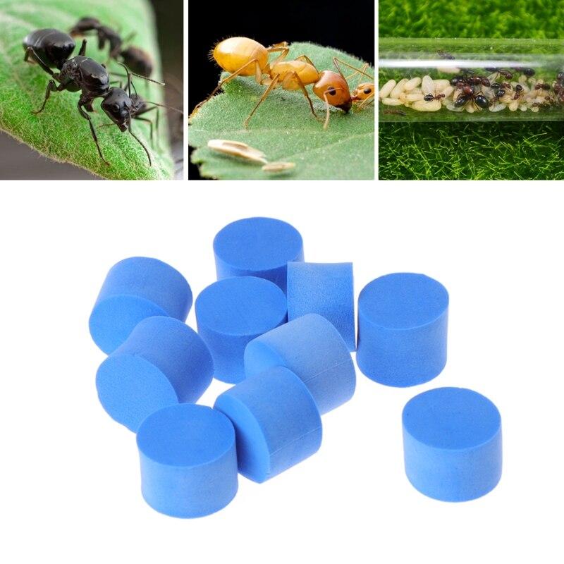 10pcs water block tube / plug for Ant Farm acrylic moisture with feeding area, Ant Villa PET inserts advanced Mania farm ants bed making tools