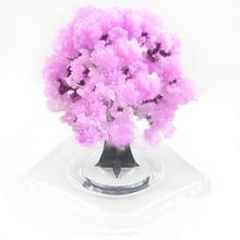 2019 90mm Pink Magic Growing Paper Sakura Tree Magical Grow Christmas Trees Desktop Cherry Blossom Wunderbaum Science Kids Toys