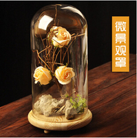 Creative Landscape The New Glass Cover DIY Micro Glass Characteristics Of Creative Gifts