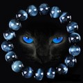Высокое Качество Голубой Тигровый Глаз Будды Браслеты Природного Камня Круглые Бусины Эластичность Веревка Мужчины Женщины Браслет