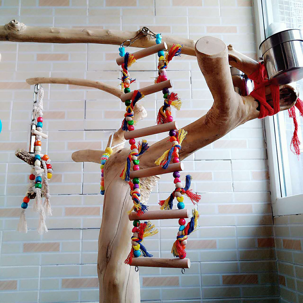 Funny Multicolor Bird Wood LadderToys Parrot Swing Parrot Stand Pet Toys