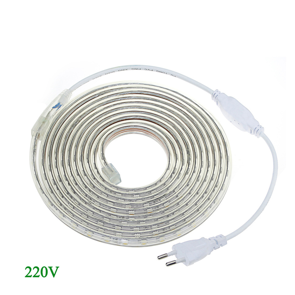 AC 220V 240V Silicone Tube Waterproof 5050 SMD LED Strip light Tape 1M/2M/3M/4M/5M/6M/7M/8M/9M/10M 60LEDs/M + EU Power Plug