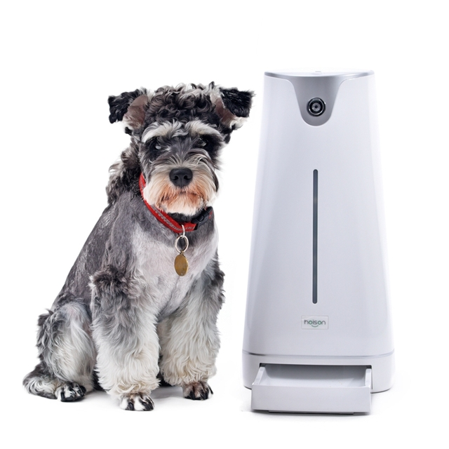 diy food campbellandkellarteam dog cheap with feeder fully timer automatic find