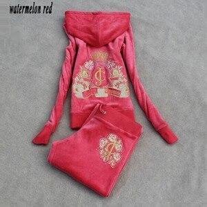 Image 5 - Survêtement en tissu velours pour femme, survêtement féminin, survêtement féminin, sweat à capuche et pantalon, taille S à XXXL, printemps/automne, 2018