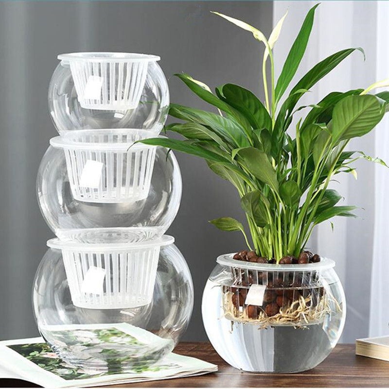 Free Shipping Diameter=20cm Glass Vase Home Decorative Sitting-room Bedroom Office Flower Decoration Glass Aquarium