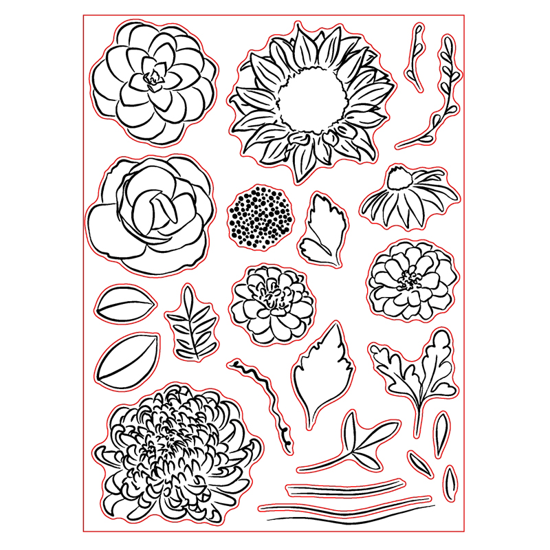 Top 10 Most Popular Chrysanthemum Stamp Brands And Get Free