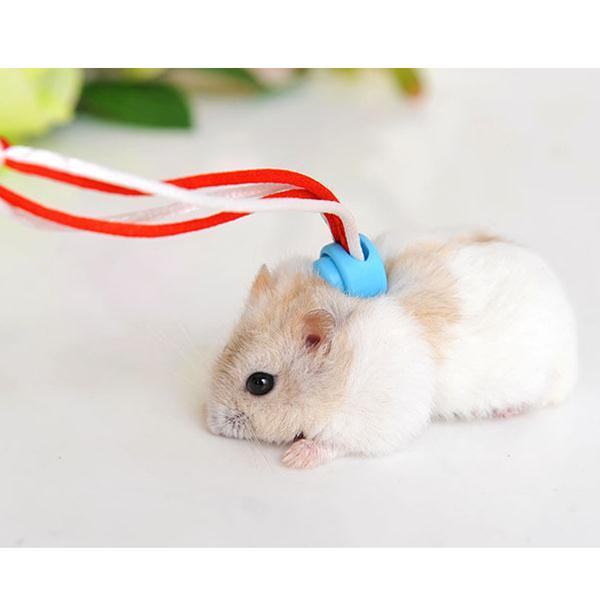 Harness with Leash for Hamsters