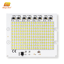 DIY LED SMD Chip Lamp 10W 20W 30W 50W 100W Light Chip AC220V Input Directly Smart IC Fit For Outdoor Light Cold White Warm White