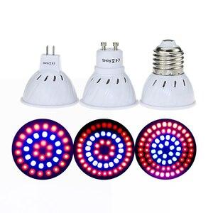 220V Phyto Lamp Full Spectrum