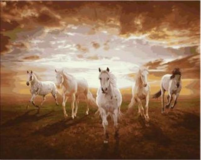 five white running horses printed diy digital oil painting by