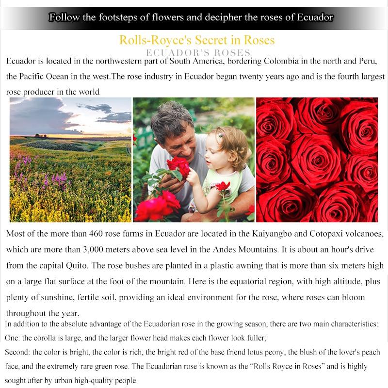 ZOTOONE, пасхальное украшение, подарок, Вечные сохраненные цветы, подарок на день святого Валентина для возлюбленных и родителей G - 5