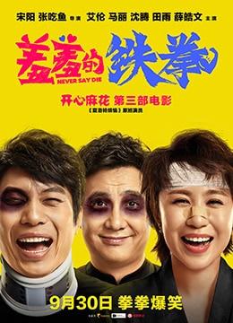 《羞羞的铁拳》2017年中国大陆喜剧,奇幻电影在线观看