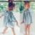 Moda Bebê Vestido de Manga Comprida Pirncess Roupas Das Meninas Primavera Peter pan Colarinho Crianças Vestidos Para Meninas Floral Roupas vestido