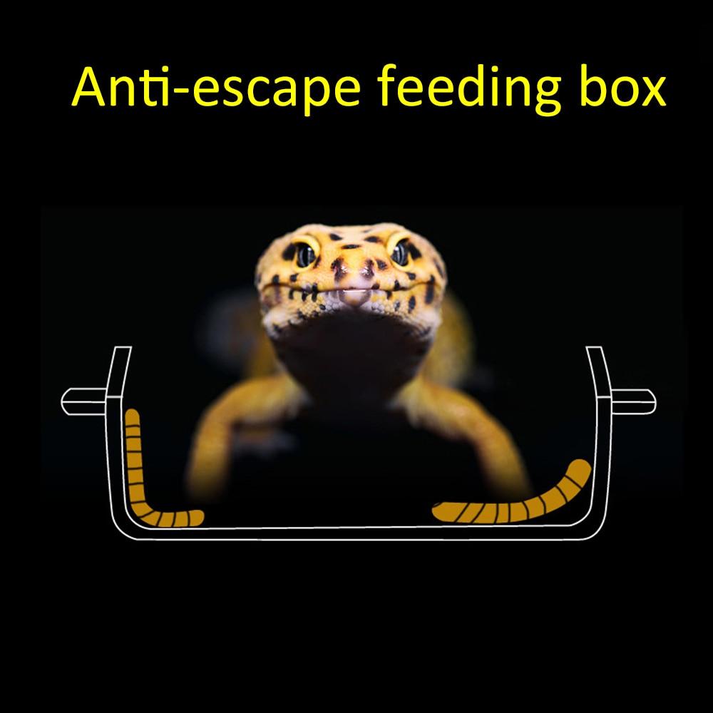 3B5873CC76 ☘️ Acrylic Reptile Feeding Box Anti Escape Box Feeder Bowl For  Reptile Snake Python