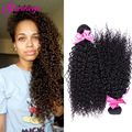 Brazilian Kinky Curly Virgin Hair 2Pcs 7A Brazilian Afro Kinky Curly Hair Rosa Hair Products Curly Weave Human Hair Bundles