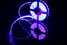 DIY LED U HOME DC12V 440nm 450nm Aquarium Fish Tank Actinic Blue&Purple Waterproof SMD2835 LED Strip Light for Decoratioin