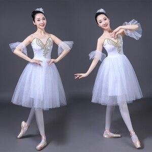 Image 2 - Adult Romantic Ballet Tutu Rehearsal Practice Skirt Swan Costume for Women Long Tulle Dress White pink blue color Ballet Wear
