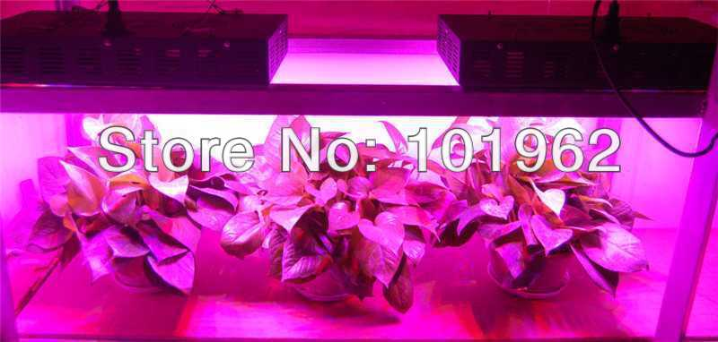 New China 5PCS 300W fluorescent grow lights for plants ...