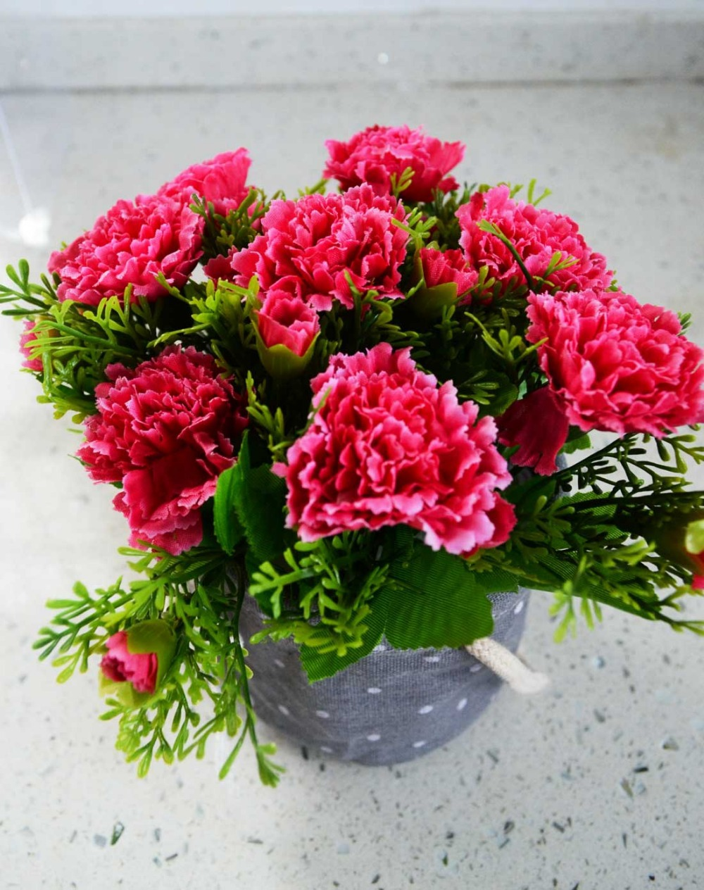 aliexpresscom buy 200pc bonsai flower seeds very beautiful perfume rainbow carnation seed rare plants of various colors from reliable flower plants - Carnation Flower Colors
