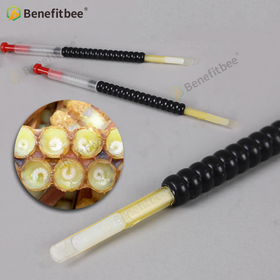 Benefitbee Beekeeping Tool Move Needle Bee Larva Queen Bee Moving Equipment Bee Eggs Needle Grafting Tool Beekeeping Equipment