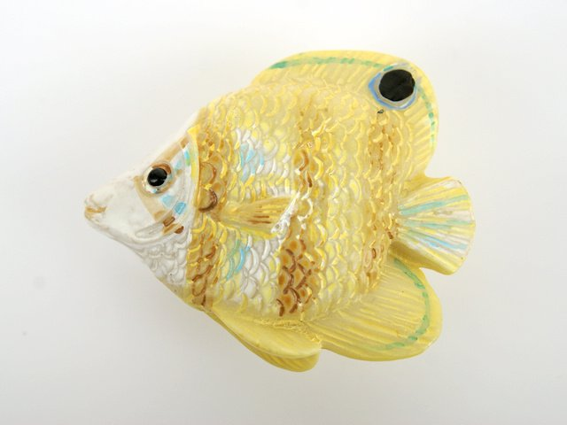 Online buy wholesale tropical furniture from china for Tropical fish wholesale