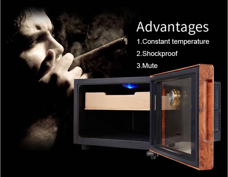 cigar humidar (8)