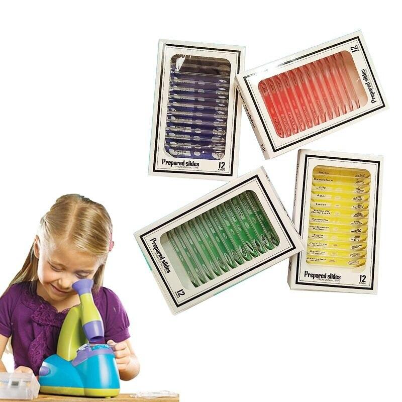 48pcs Enfants En Plastique Sp/écimen /Échantillons Microscope Pr/épar/é Diapositives dAnimaux Insectes Plantes Fleurs pour Microscopes St/ér/éo