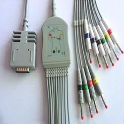 Compatible For Burdick EK10 Elite, Elite II ECG EKG Cable with leadwires 10 leads Medical ECG Cable Banana 4.0 End IEC