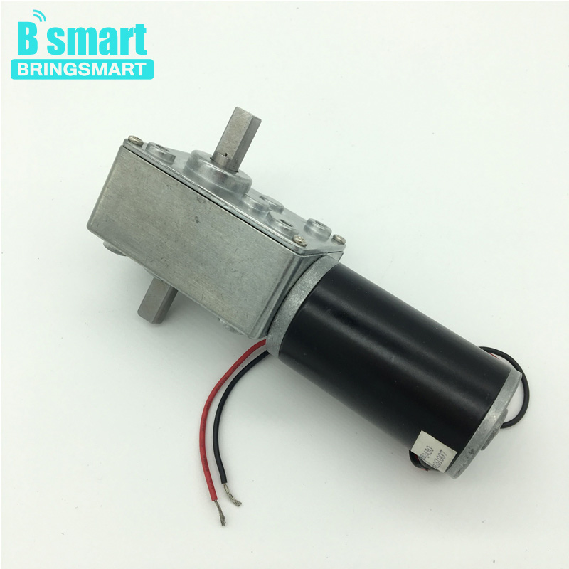 Bringsmart Wholesale A58SW31ZYS Double Shaft Worm Geared Motor 12V DC High Torque Reducter Reversible Motor 24V Gear Motor wholesale 12 30v 8 1040rpm jgb37 3650 gear motor dc 12v brushless engine d shaft for common use bringsmart