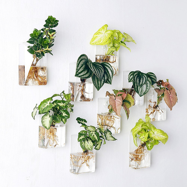 mkono 2 pcs wall mounted glass vase wall hanging planter plant flower pot small plants terrarium