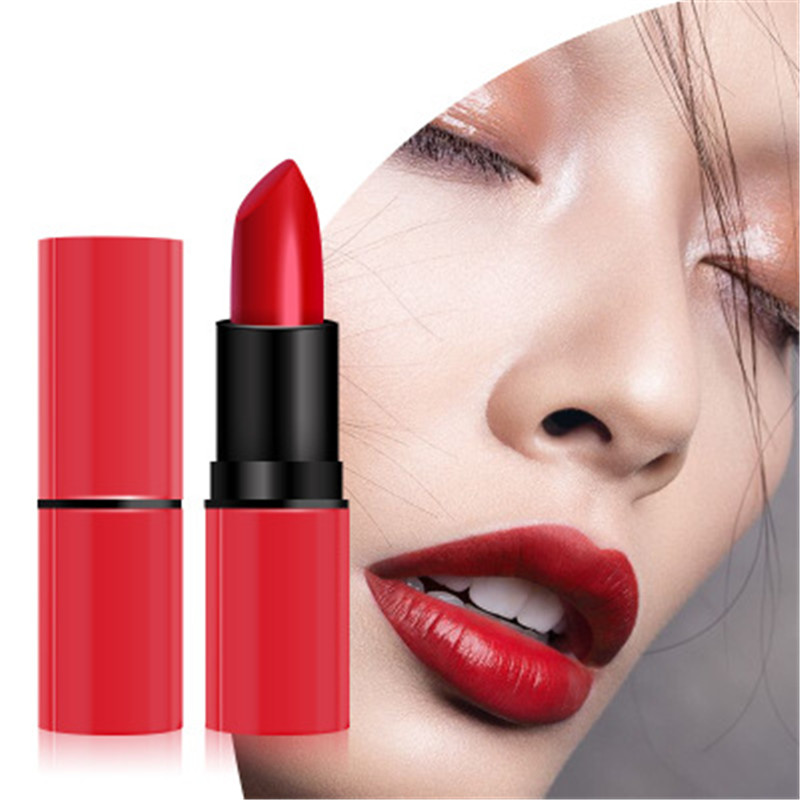 8Colors Sexy Red Nude Lipstick Matte professional Lips Makeup Long-lasting Waterproof Cosmetic Maquiagem