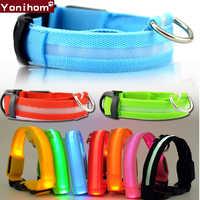 Collar de nylon para Perro LED brillante para Perro mascota cuello luminoso ajustable Perro para Perro pequeño gato cachorro LED luz nocturna para seguridad XS