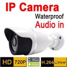 surveillance outdoor camera waterproof