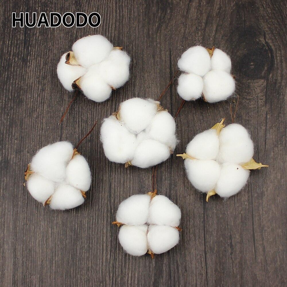 HUADODO 6 Pcs Natürliche Baumwolle kopf Künstliche Blume Getrocknete blumen Für Home Weihnachten DIY Girlande Kranz Blumen Wand Dekoration