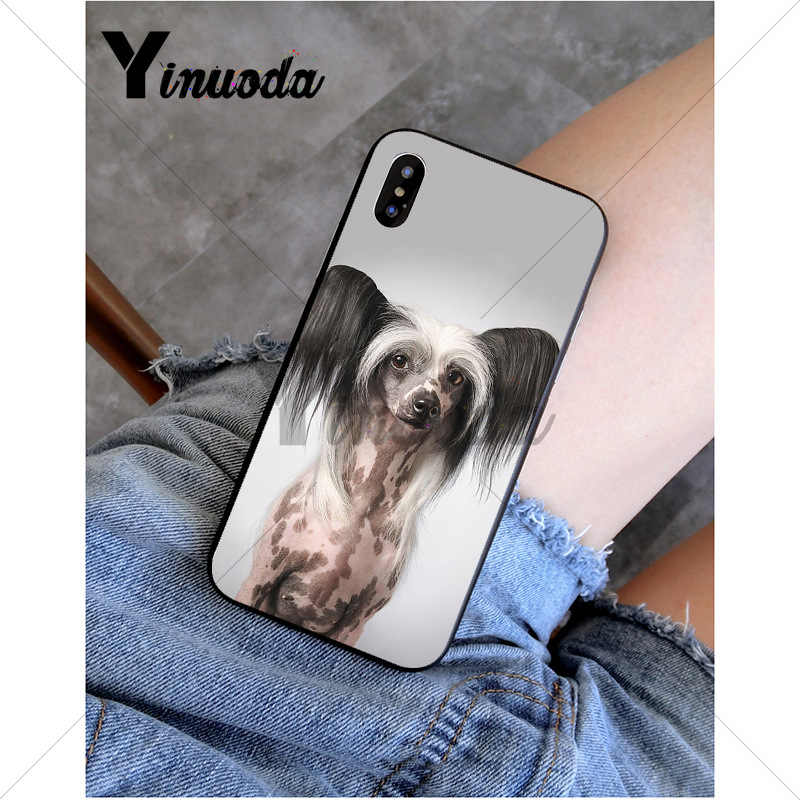 Yinuoda Chó Của Loài Trung Quốc Mào Đen Mềm Mại Ốp Lưng Điện Thoại Apple iPhone 8 7 6 6S 6S Plus X XS Max 5 5S SE XR 11 11pro 11 Promax