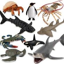 Oceano mar modelo de vida subaquática mundo baleia tubarão tartaruga figura de ação aquário oceano animais marinhos modelo educação crianças brinquedo